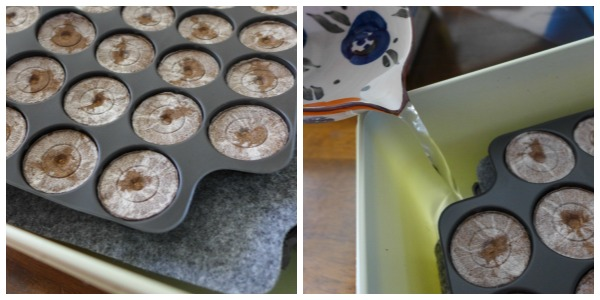 jiffy seed starter instructions
