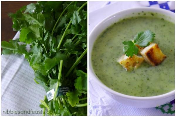 sopa-de-cilantro-4.jpg