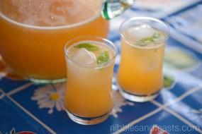 Agua Fresca de Melon   Cantaloupe Cooler